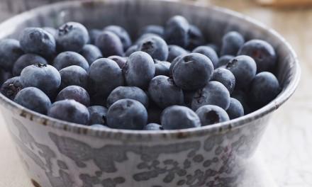Berries as Disease Fighters