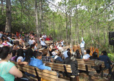 Auditorium in Nature